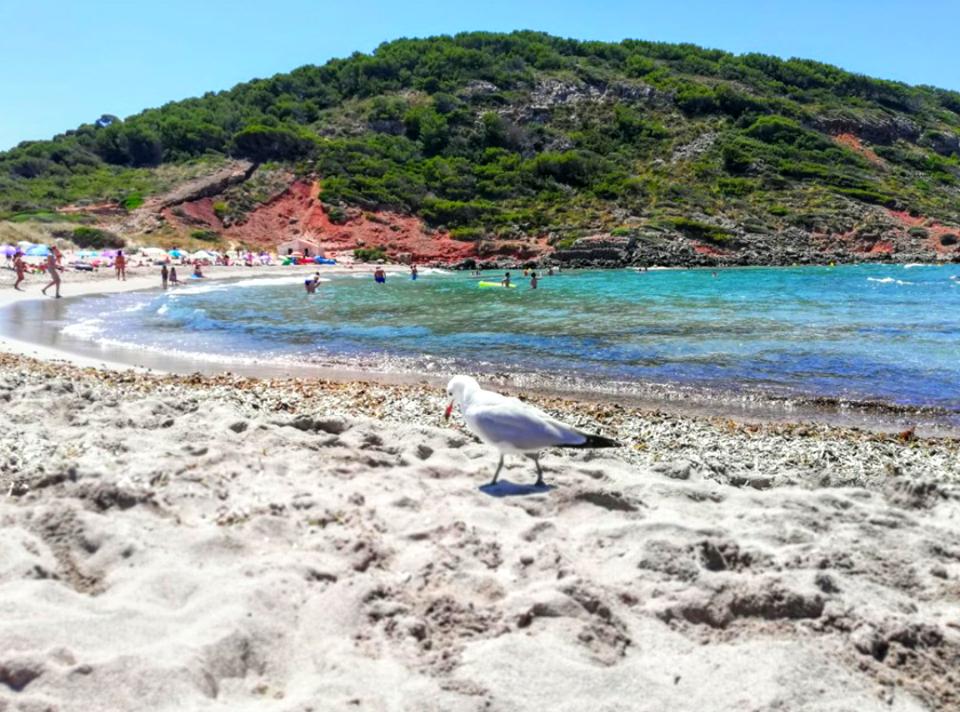 Cale di Menorca: La Vall