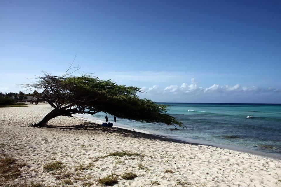 Eagle beach: playas más hermosas del mundo